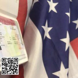 виза америка